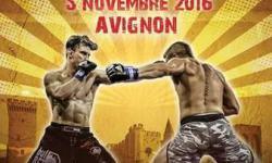Les gladiateurs à Avignon !