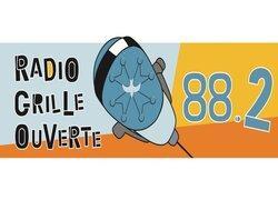 RGO (Radio Grille Ouverte)